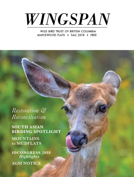 Wingspan_October 2018-Final