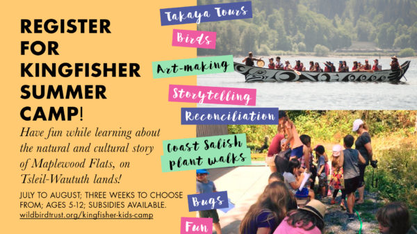 2019 Kingfisher Kids Summer Camp