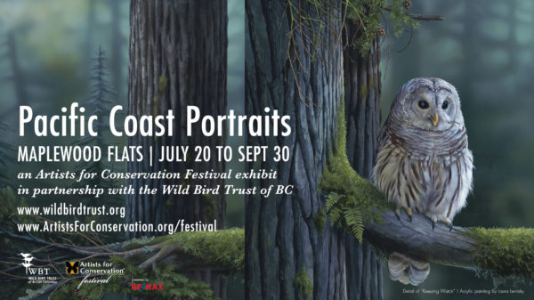 Pacific Coast Portraits - FB Event cover